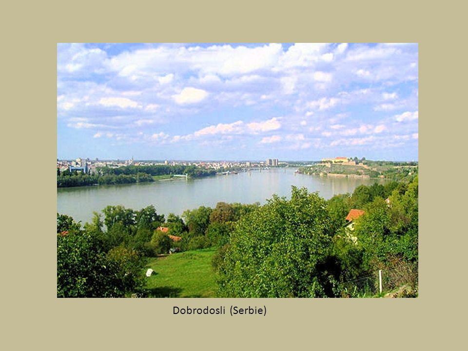 Budapest : Les Thermes publics de Szechenyi
