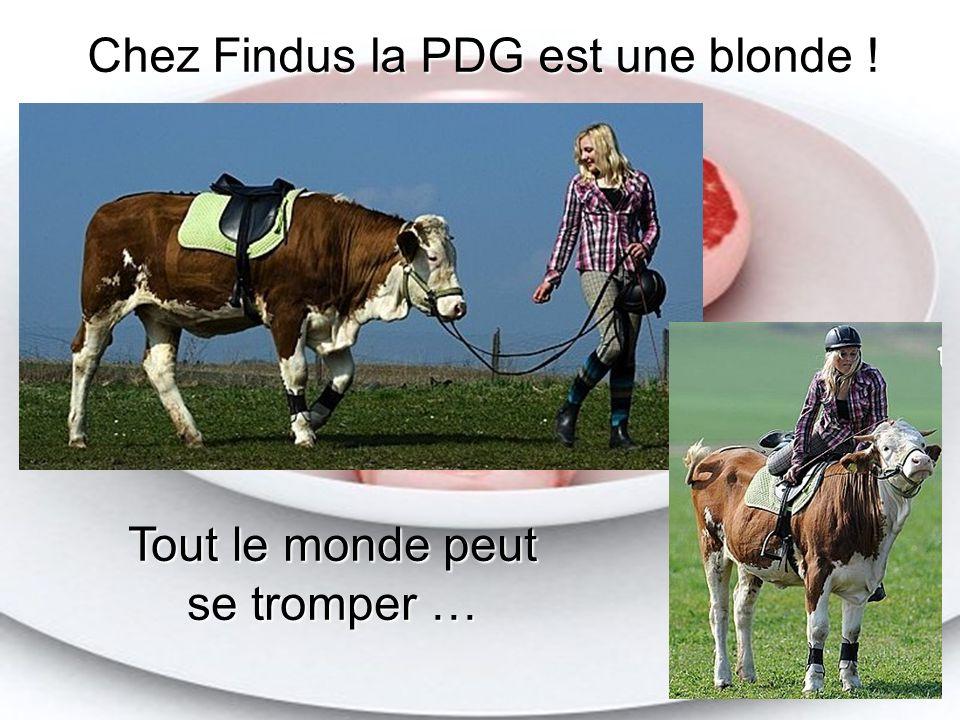 Diaporama PPS réalisé pour http://www.diaporamas-a-la-con.com http://www.diaporamas-a-la-con.com Diaporama PPS réalisé pour http://www.diaporamas-a-la-con.com Diaporamas-a-la-con.com Chez Findus la PDG est une blonde .