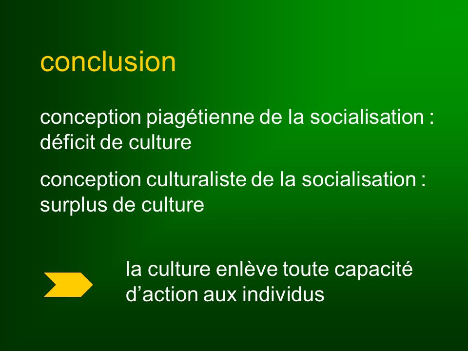 conclusion conception piagétienne de la socialisation : déficit de culture conception culturaliste de la socialisation : surplus de culture la culture