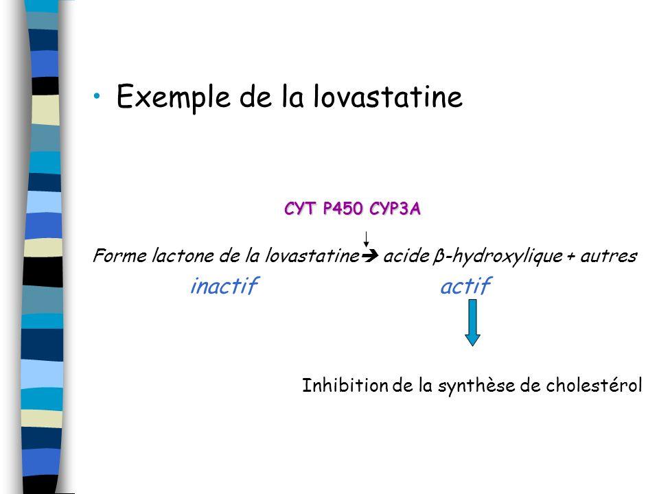 Exemple de la lovastatine Forme lactone de la lovastatine acide β-hydroxylique + autres inactif actif Inhibition de la synthèse de cholestérol CYT P45