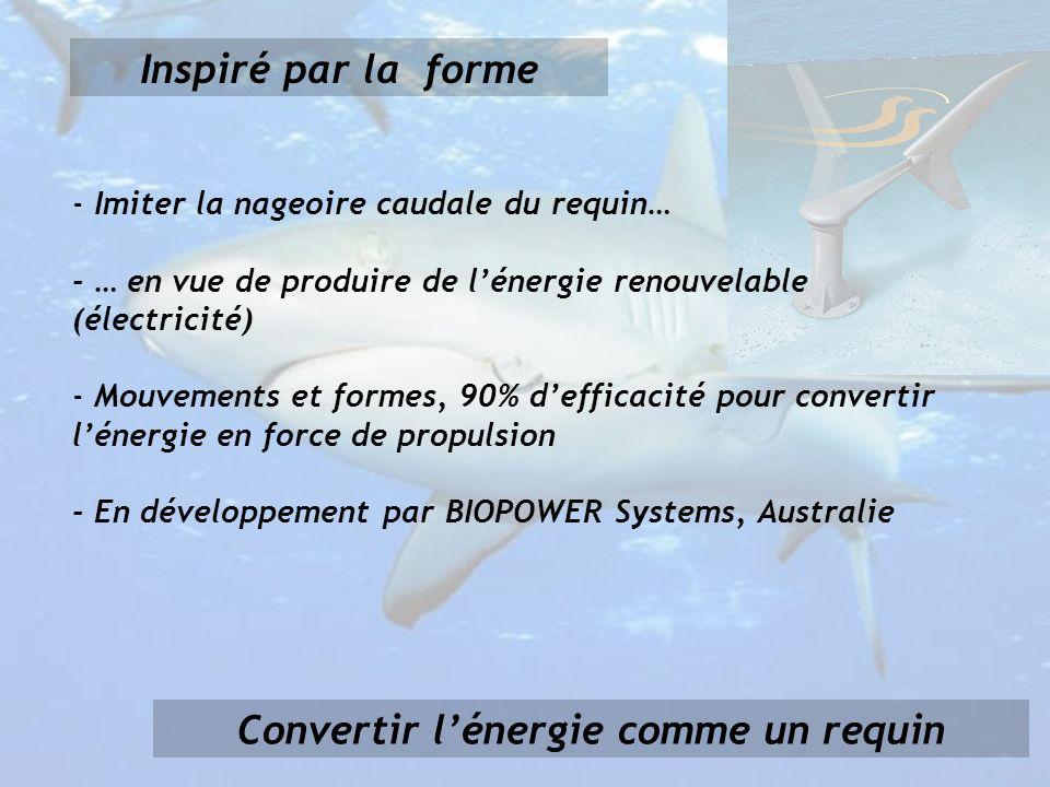 Convertir lénergie comme un requin Inspiré par la forme - Imiter la nageoire caudale du requin… - … en vue de produire de lénergie renouvelable (électricité) - Mouvements et formes, 90% defficacité pour convertir lénergie en force de propulsion - En développement par BIOPOWER Systems, Australie