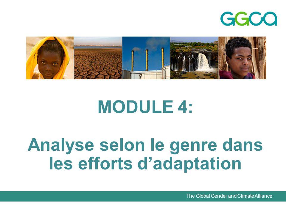 The Global Gender and Climate Alliance MODULE 4: Analyse selon le genre dans les efforts dadaptation