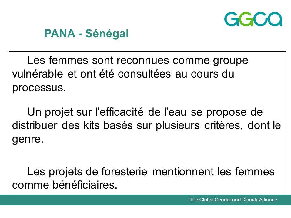 The Global Gender and Climate Alliance Les femmes sont reconnues comme groupe vulnérable et ont été consultées au cours du processus.