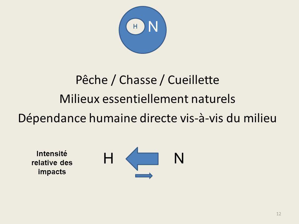 Pêche / Chasse / Cueillette Milieux essentiellement naturels Dépendance humaine directe vis-à-vis du milieu H N H N Intensité relative des impacts 12