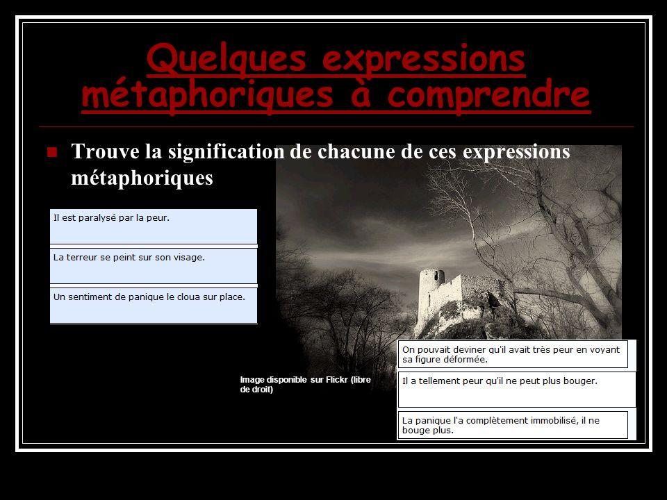 Quelques expressions métaphoriques à comprendre Trouve la signification de chacune de ces expressions métaphoriques Image disponible sur Flickr (libre de droit)