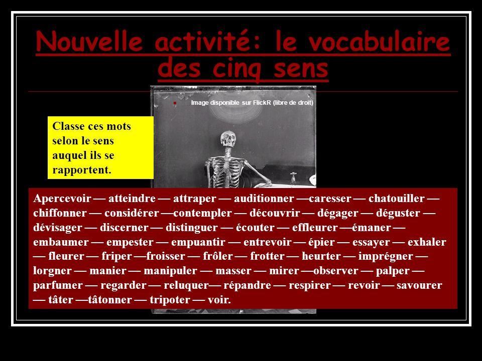 Nouvelle activité: le vocabulaire des cinq sens Image disponible sur FlickR (libre de droit) Classe ces mots selon le sens auquel ils se rapportent.
