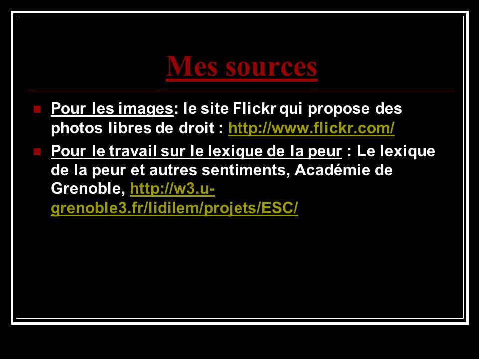 Mes sources Pour les images: le site Flickr qui propose des photos libres de droit : http://www.flickr.com/http://www.flickr.com/ Pour le travail sur le lexique de la peur : Le lexique de la peur et autres sentiments, Académie de Grenoble, http://w3.u- grenoble3.fr/lidilem/projets/ESC/http://w3.u- grenoble3.fr/lidilem/projets/ESC/
