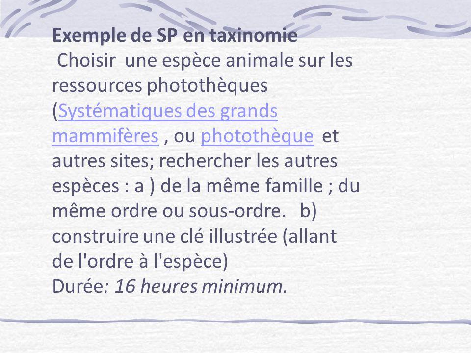 Exemple de SP en taxinomie Choisir une espèce animale sur les ressources photothèques (Systématiques des grands mammifères, ou photothèque et autres sites; rechercher les autres espèces : a ) de la même famille ; du même ordre ou sous-ordre.