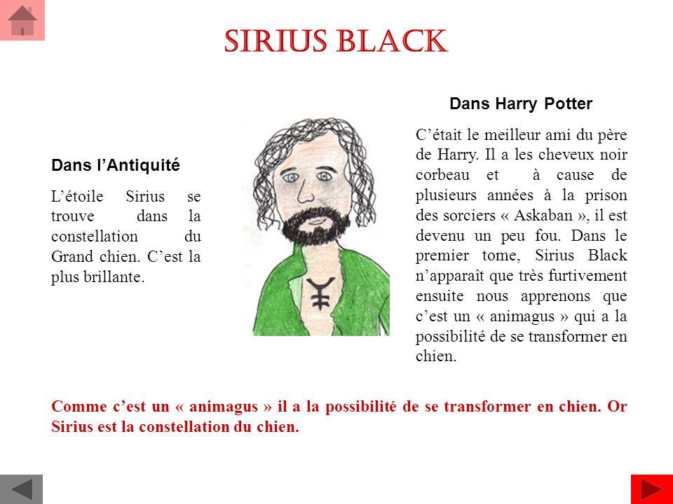 Sirius black Dans lAntiquité Létoile Sirius se trouve dans la constellation du Grand chien.