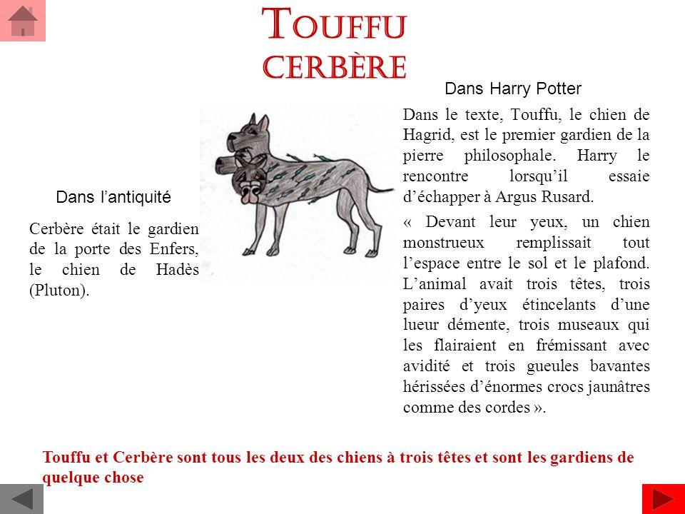 T OUFFU Cerbère Dans Harry Potter Dans le texte, Touffu, le chien de Hagrid, est le premier gardien de la pierre philosophale.