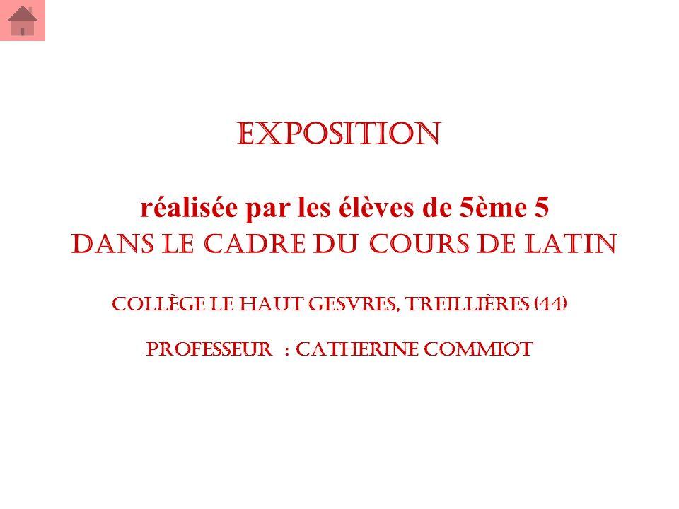 EXPOSITION réalisée par les élèves de 5ème 5 dans le cadre du cours de latin collège Le Haut Gesvres, Treillières (44) professeur : Catherine Commiot