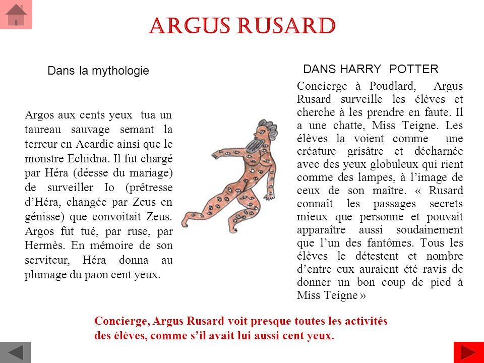 Argus Rusard DANS HARRY POTTER Concierge à Poudlard, Argus Rusard surveille les élèves et cherche à les prendre en faute.
