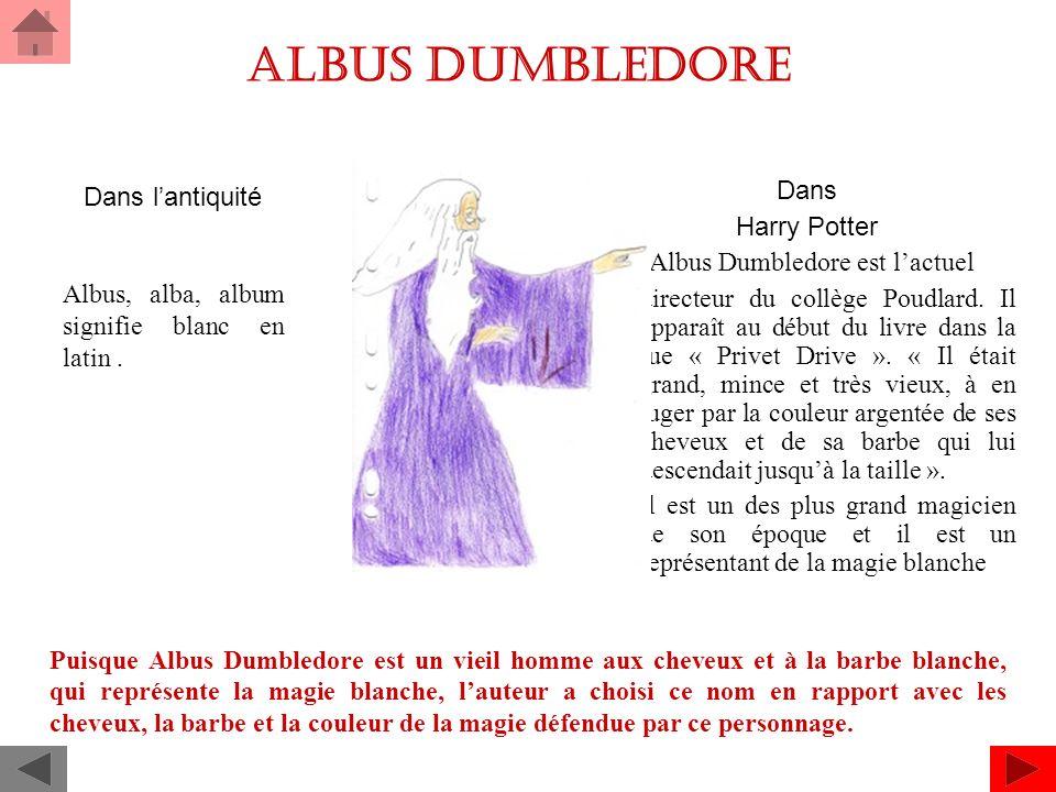 ALBUS Dumbledore Dans Harry Potter Albus Dumbledore est lactuel directeur du collège Poudlard.