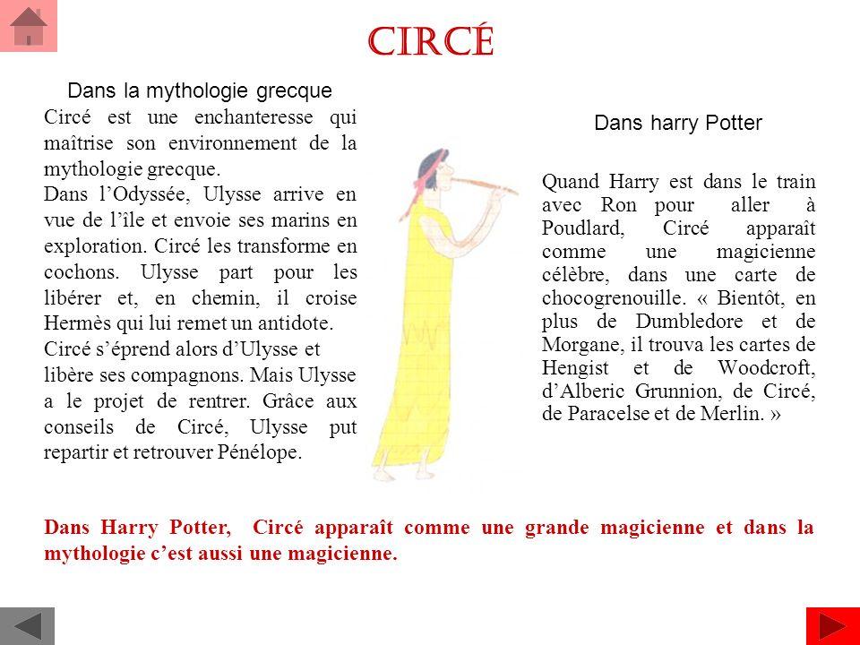 Circé Dans harry Potter Quand Harry est dans le train avec Ron pour aller à Poudlard, Circé apparaît comme une magicienne célèbre, dans une carte de chocogrenouille.