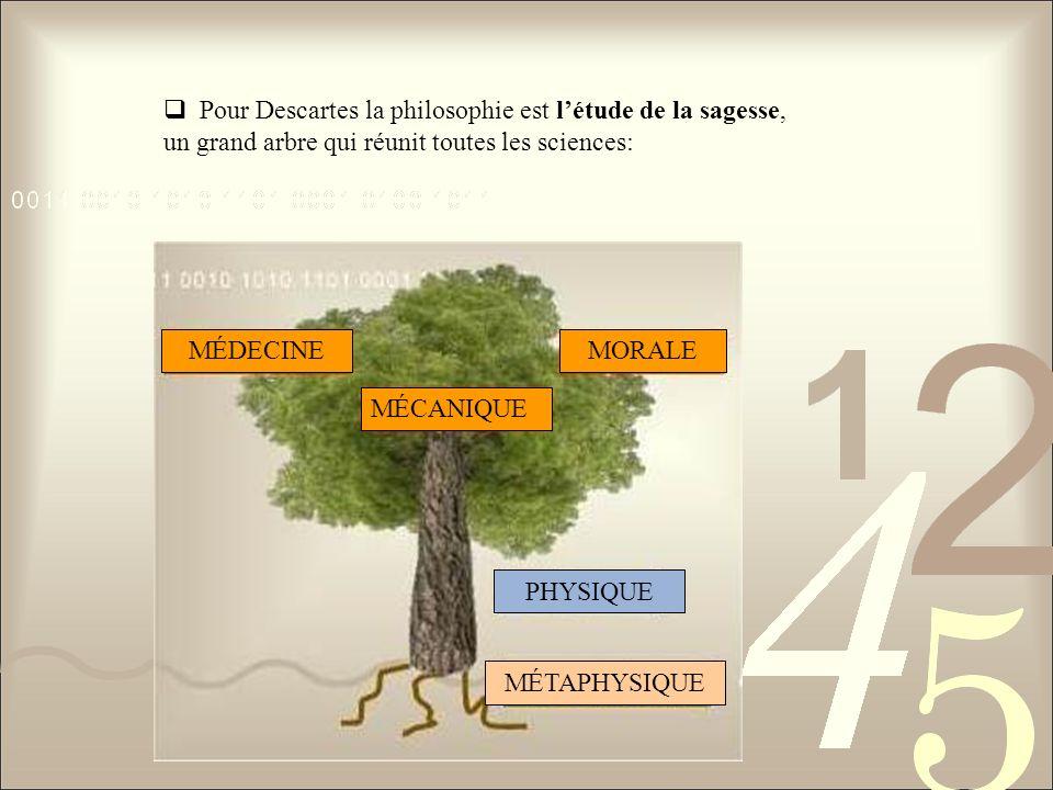 Pour Descartes la philosophie est létude de la sagesse, un grand arbre qui réunit toutes les sciences: MÉDECINE MÉCANIQUE MORALE PHYSIQUE MÉTAPHYSIQUE