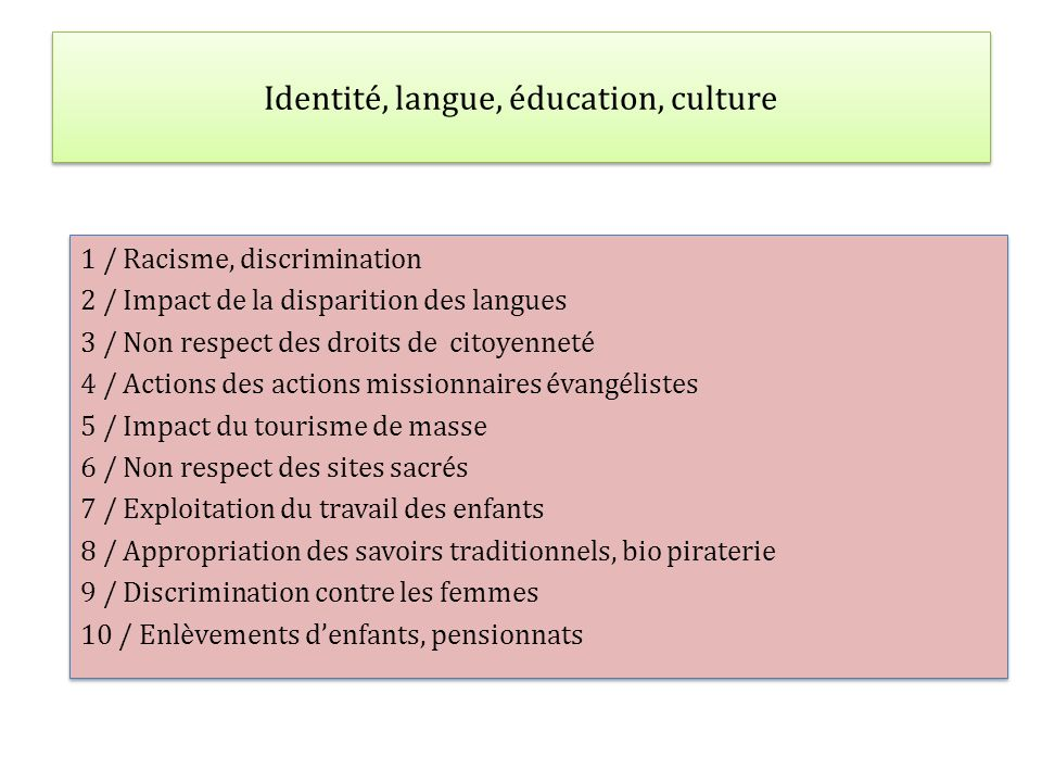 Identité, langue, éducation, culture 1 / Racisme, discrimination 2 / Impact de la disparition des langues 3 / Non respect des droits de citoyenneté 4