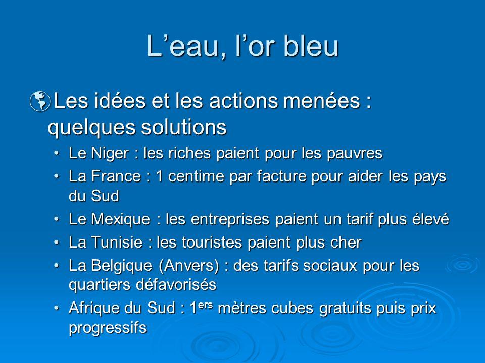 Leau, lor bleu Les idées et les actions menées : quelques solutions Les idées et les actions menées : quelques solutions Le Niger : les riches paient