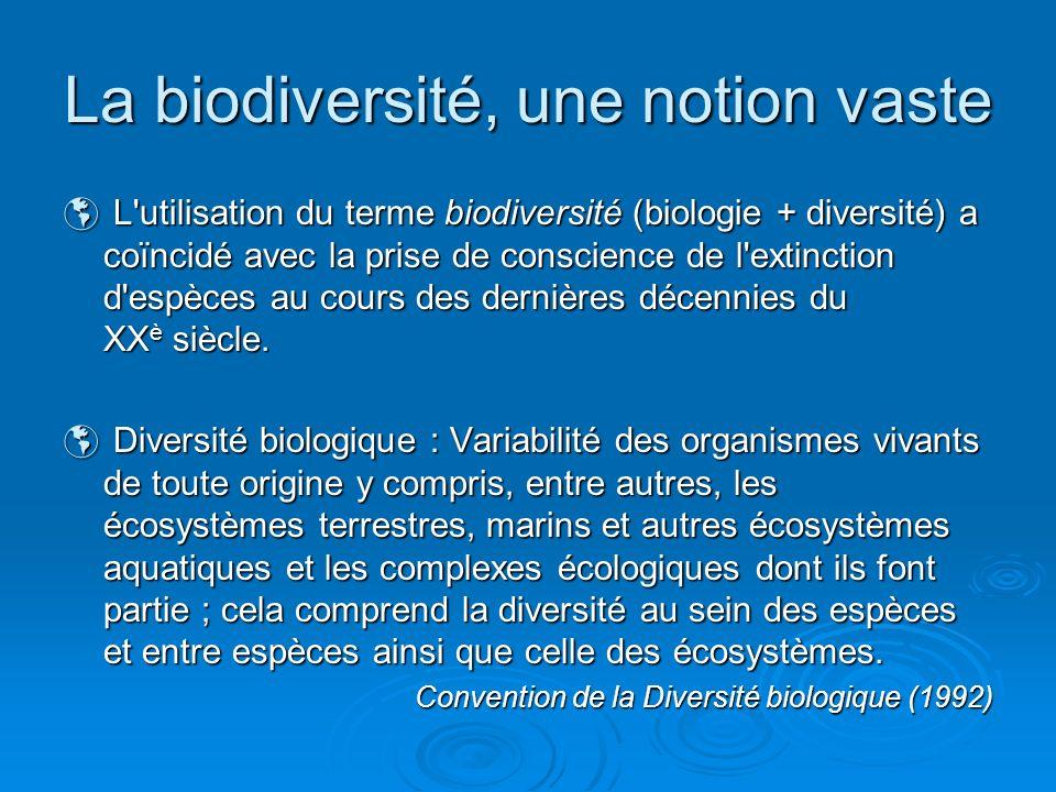 La biodiversité, une notion vaste 3 niveaux : 3 niveaux : Diversité génétiqueDiversité génétique Diversité spécifiqueDiversité spécifique Diversité écosystémiqueDiversité écosystémique Aspects importants de la biodiversité : Aspects importants de la biodiversité : Dimension temporelleDimension temporelle Composante spatialeComposante spatiale