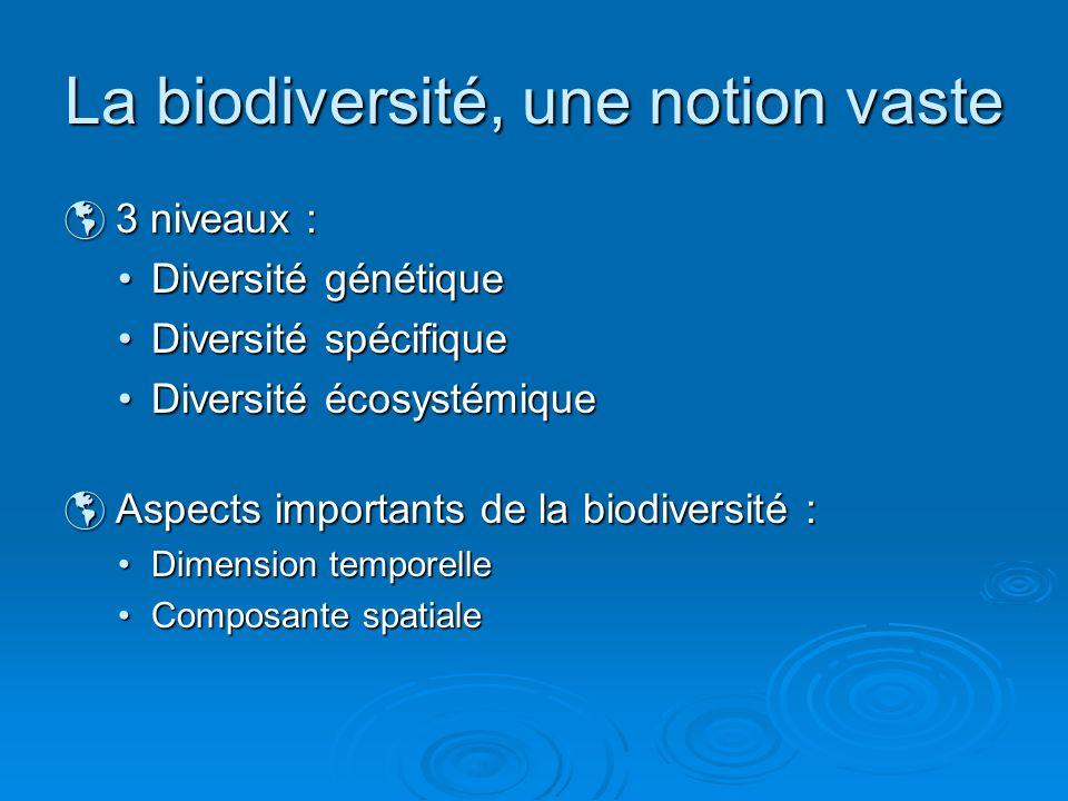 La biodiversité, une notion vaste 3 niveaux : 3 niveaux : Diversité génétiqueDiversité génétique Diversité spécifiqueDiversité spécifique Diversité éc