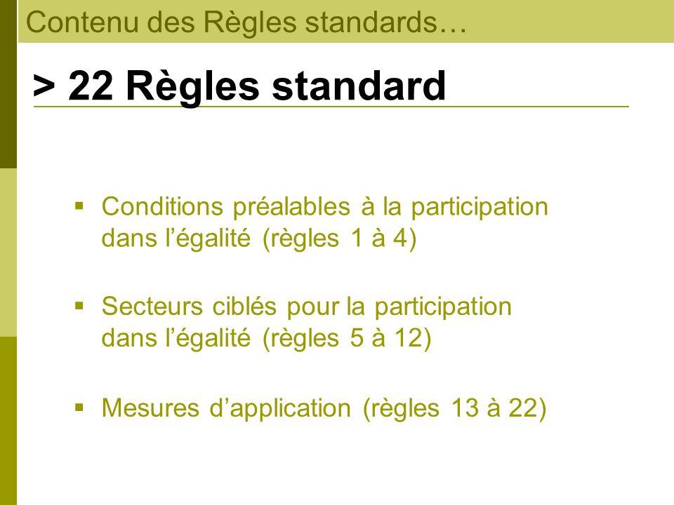 Contenu des Règles standards… > 22 Règles standard Mesures dapplication (règles 13 à 22) Conditions préalables à la participation dans légalité (règle