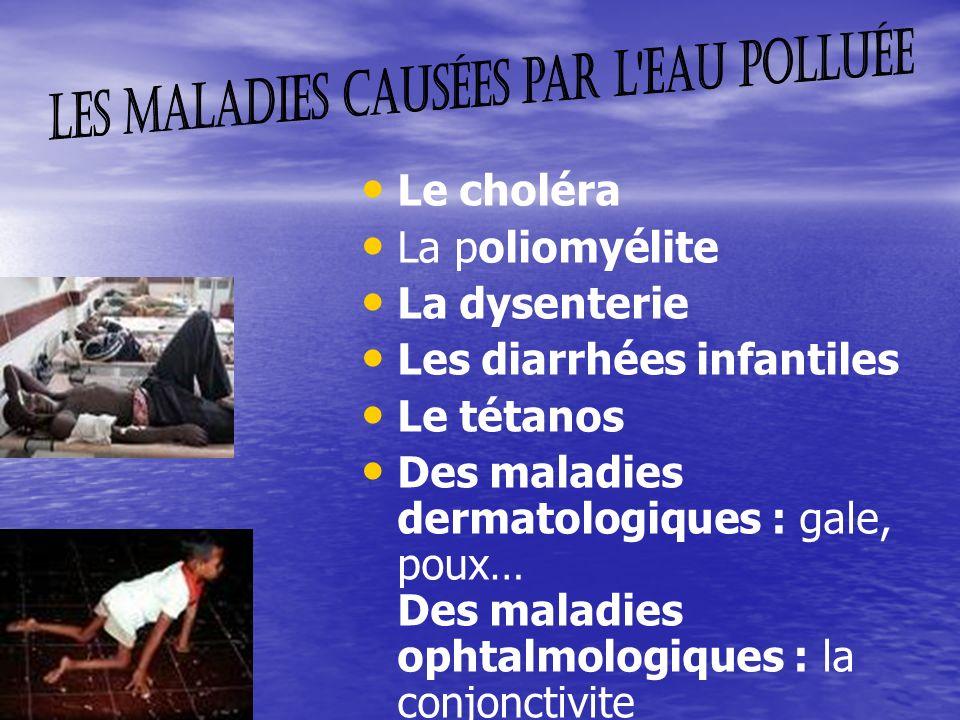 Le choléra La poliomyélite La dysenterie Les diarrhées infantiles Le tétanos Des maladies dermatologiques : gale, poux… Des maladies ophtalmologiques : la conjonctivite