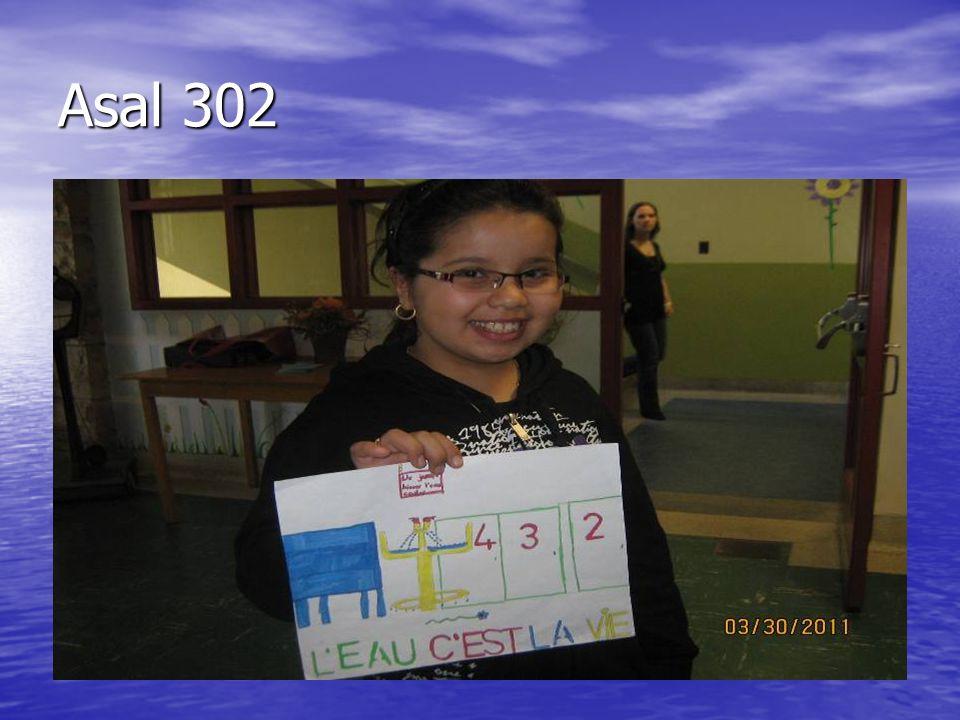 Asal 302