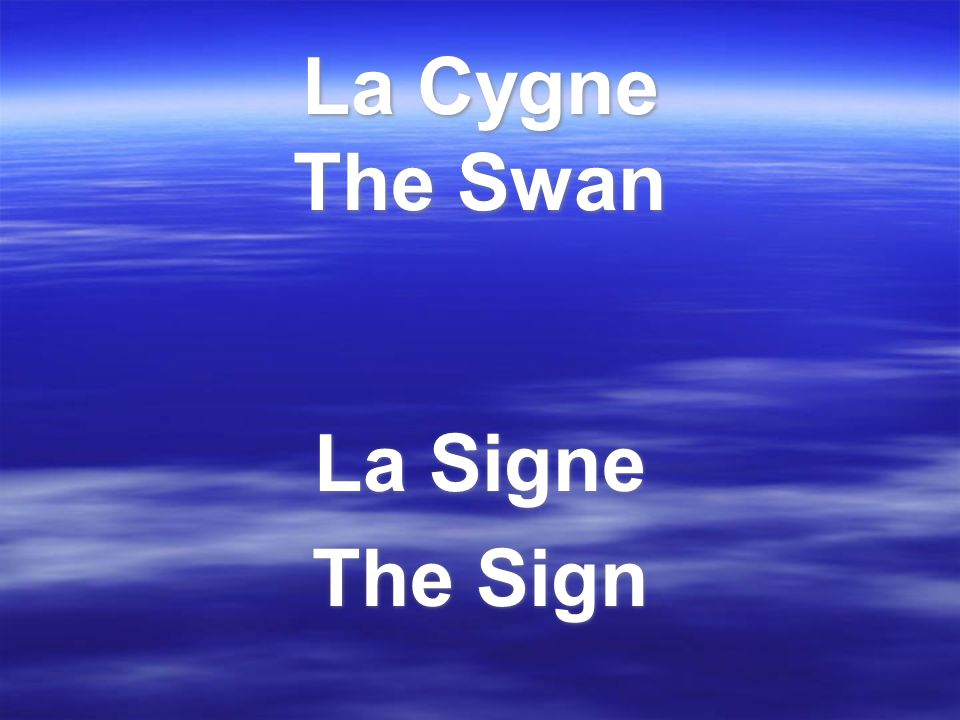 La Cygne The Swan La Signe The Sign La Signe The Sign