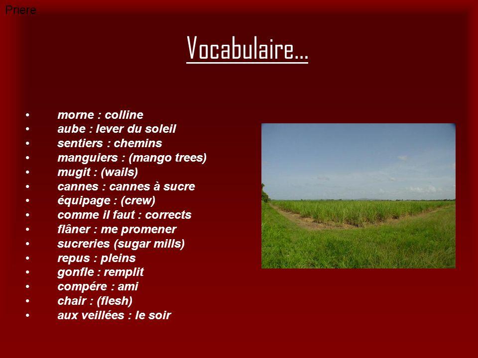 Vocabulaire… morne : colline aube : lever du soleil sentiers : chemins manguiers : (mango trees) mugit : (wails) cannes : cannes à sucre équipage : (c