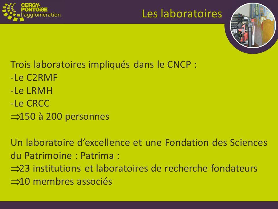 Trois laboratoires impliqués dans le CNCP : -Le C2RMF -Le LRMH -Le CRCC 150 à 200 personnes Un laboratoire dexcellence et une Fondation des Sciences du Patrimoine : Patrima : 23 institutions et laboratoires de recherche fondateurs 10 membres associés Les laboratoires