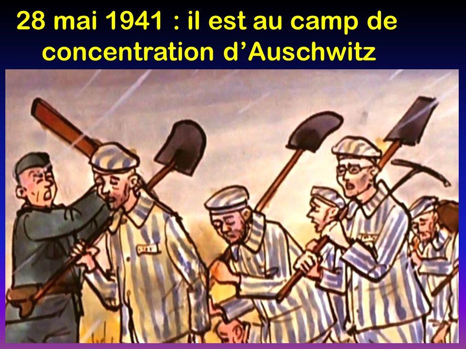 28 mai 1941 : il est au camp de concentration dAuschwitz