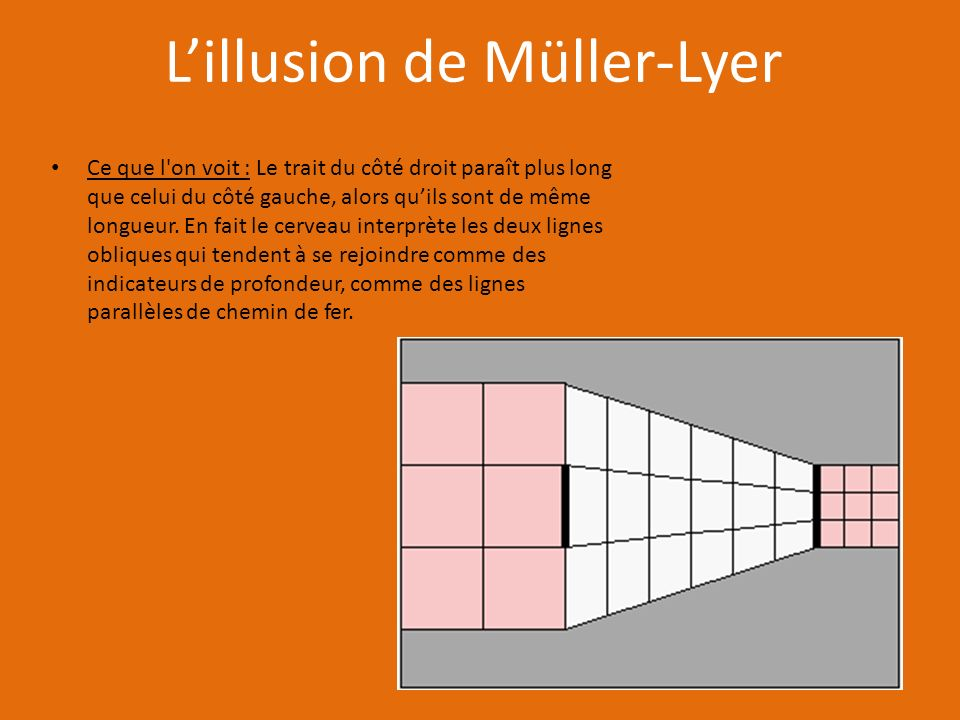 Lillusion de Müller-Lyer Ce que l on voit : Le trait du côté droit paraît plus long que celui du côté gauche, alors quils sont de même longueur.