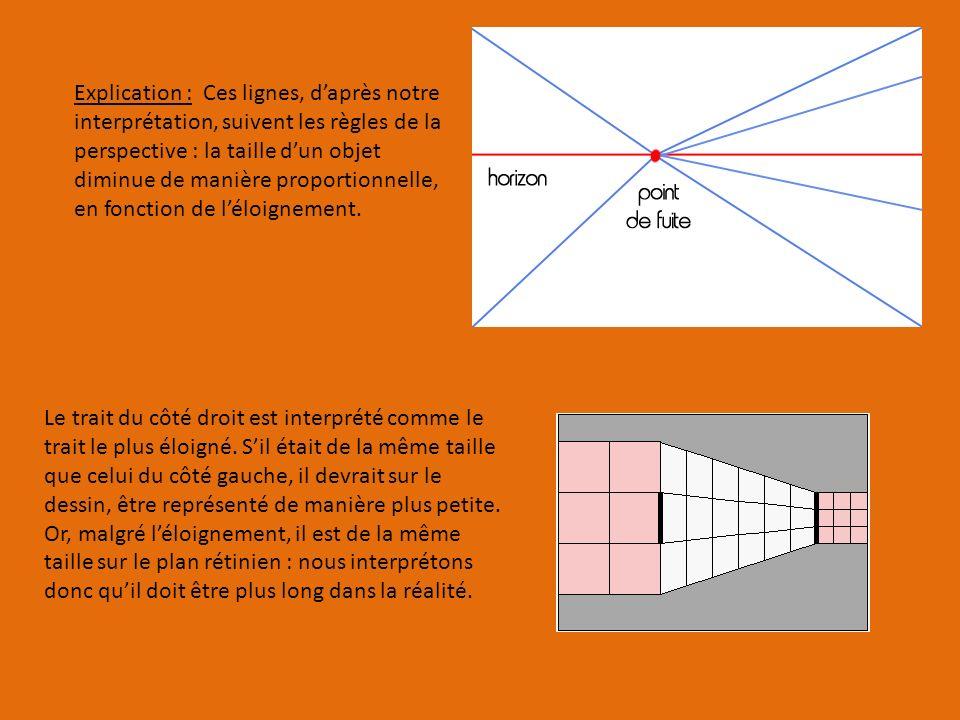 Explication : Ces lignes, daprès notre interprétation, suivent les règles de la perspective : la taille dun objet diminue de manière proportionnelle, en fonction de léloignement.
