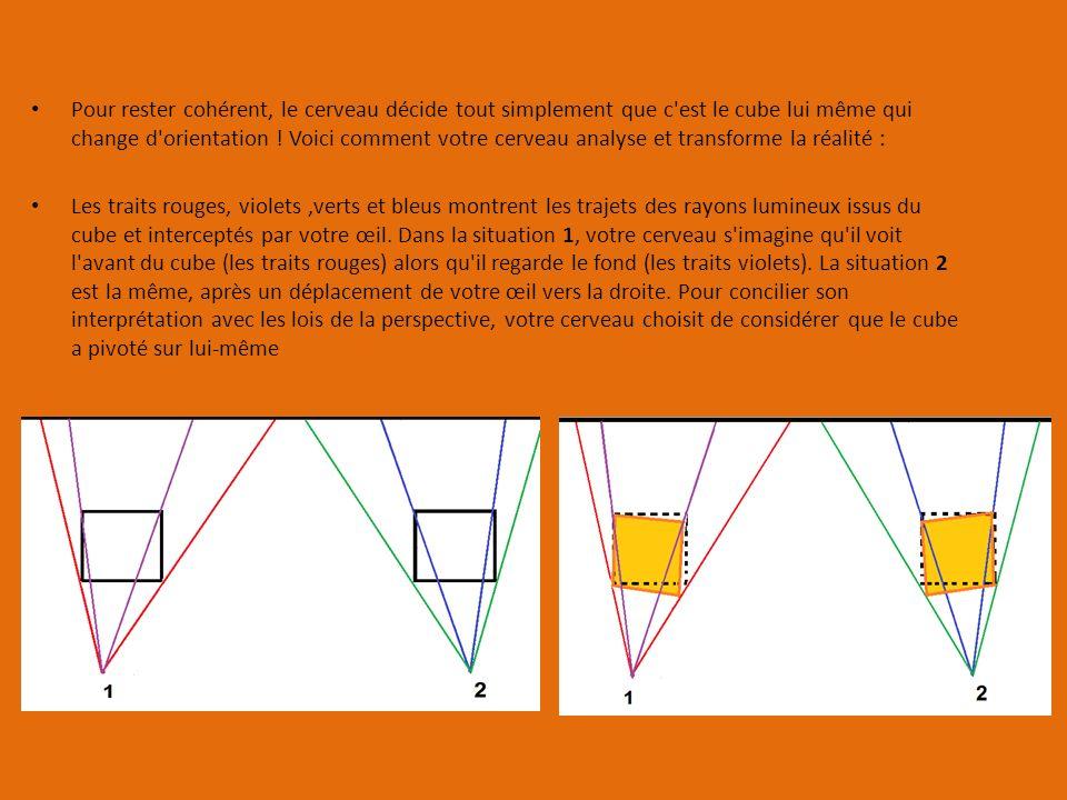 Pour rester cohérent, le cerveau décide tout simplement que c est le cube lui même qui change d orientation .