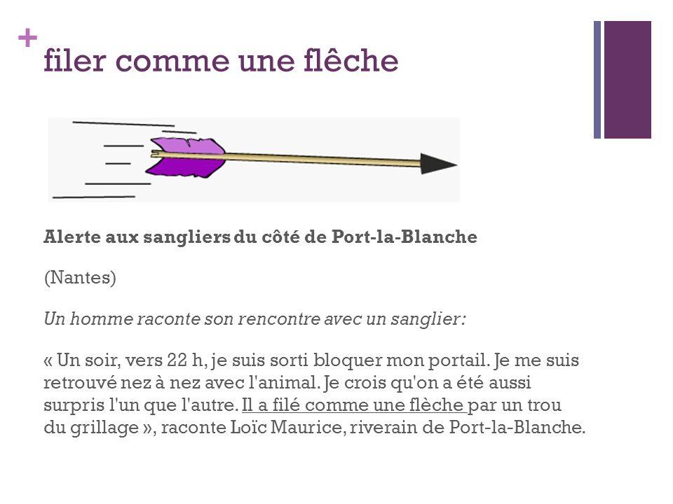 + filer comme une flêche Alerte aux sangliers du côté de Port-la-Blanche (Nantes) Un homme raconte son rencontre avec un sanglier: « Un soir, vers 22