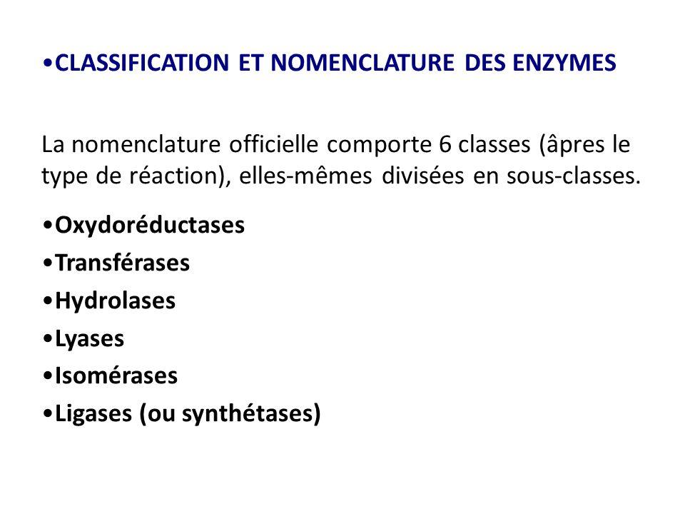 CLASSIFICATION ET NOMENCLATURE DES ENZYMES La nomenclature officielle comporte 6 classes (âpres le type de réaction), elles-mêmes divisées en sous-classes.
