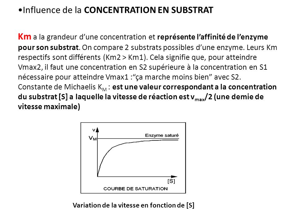 Variation de la vitesse en fonction de [S] Influence de la CONCENTRATION EN SUBSTRAT Km a la grandeur dune concentration et représente laffinité de lenzyme pour son substrat.
