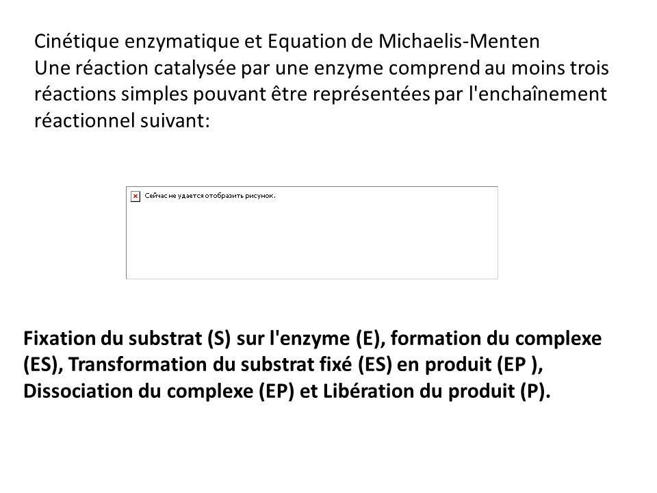 Cinétique enzymatique et Equation de Michaelis-Menten Une réaction catalysée par une enzyme comprend au moins trois réactions simples pouvant être représentées par l enchaînement réactionnel suivant: Fixation du substrat (S) sur l enzyme (E), formation du complexe (ES), Transformation du substrat fixé (ES) en produit (EP ), Dissociation du complexe (EP) et Libération du produit (P).