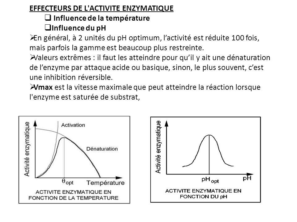 EFFECTEURS DE L ACTIVITE ENZYMATIQUE Influence de la température Influence du pH En général, à 2 unités du pH optimum, lactivité est réduite 100 fois, mais parfois la gamme est beaucoup plus restreinte.