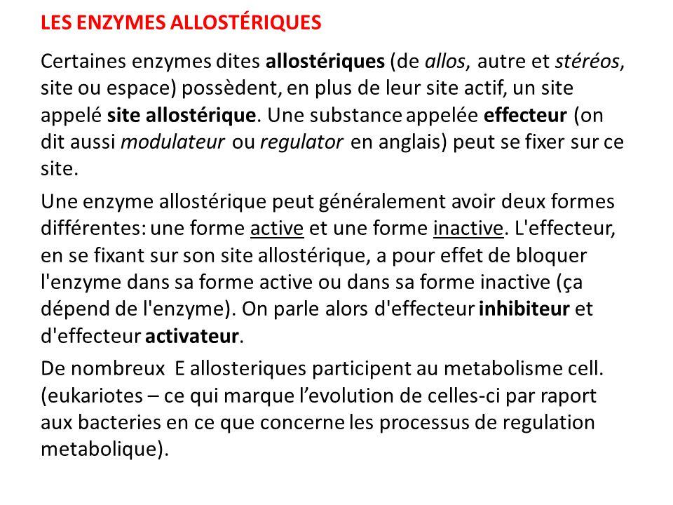 LES ENZYMES ALLOSTÉRIQUES Certaines enzymes dites allostériques (de allos, autre et stéréos, site ou espace) possèdent, en plus de leur site actif, un