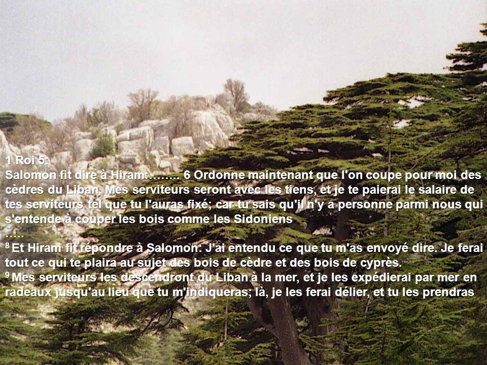 1 Roi 5: Salomon fit dire à Hiram:……..