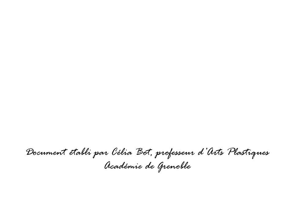 Document établi par Célia Bot, professeur dArts Plastiques Académie de Grenoble