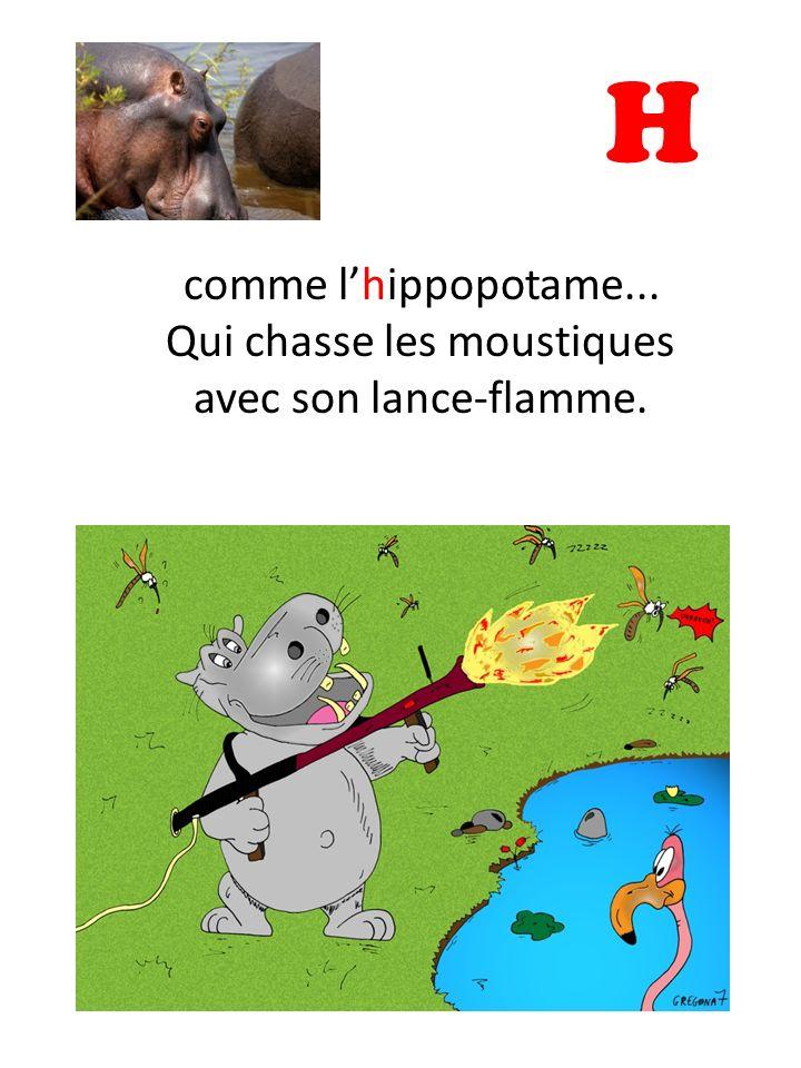 H comme lhippopotame... Qui chasse les moustiques avec son lance-flamme.