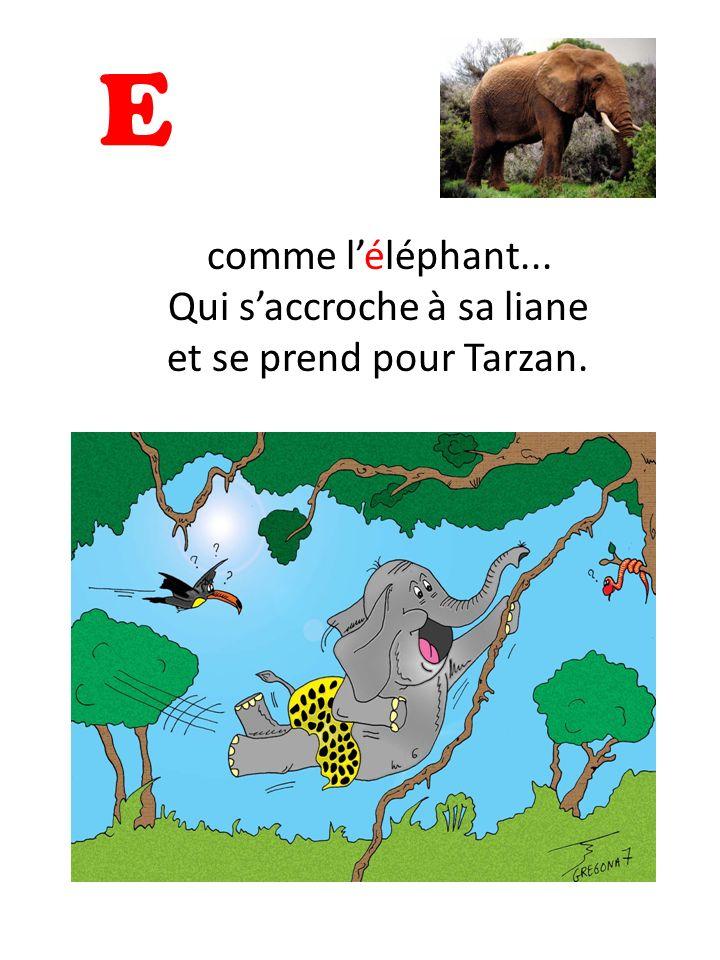 E comme léléphant... Qui saccroche à sa liane et se prend pour Tarzan.