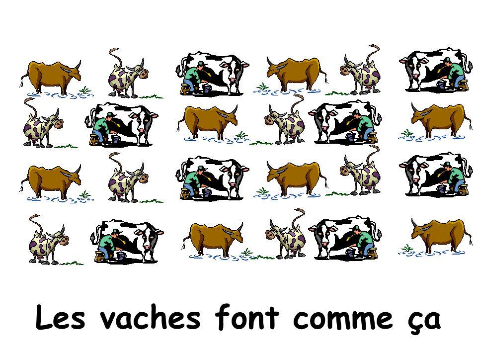 Les vaches font comme ça