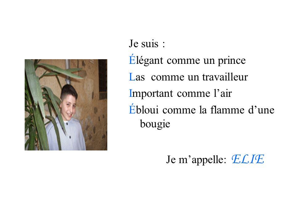 Je suis : Élégant comme un prince Las comme un travailleur Important comme lair Ébloui comme la flamme dune bougie Je mappelle: ELIE