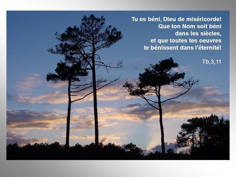 Tu es béni, Dieu de miséricorde! Que ton Nom soit béni dans les siècles, et que toutes tes oeuvres te bénissent dans l'éternité! Tb,3,11