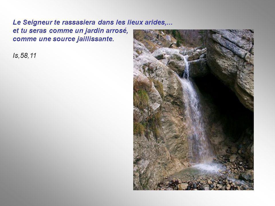 Le Seigneur te rassasiera dans les lieux arides,... et tu seras comme un jardin arrosé, comme une source jaillissante. Is,58,11