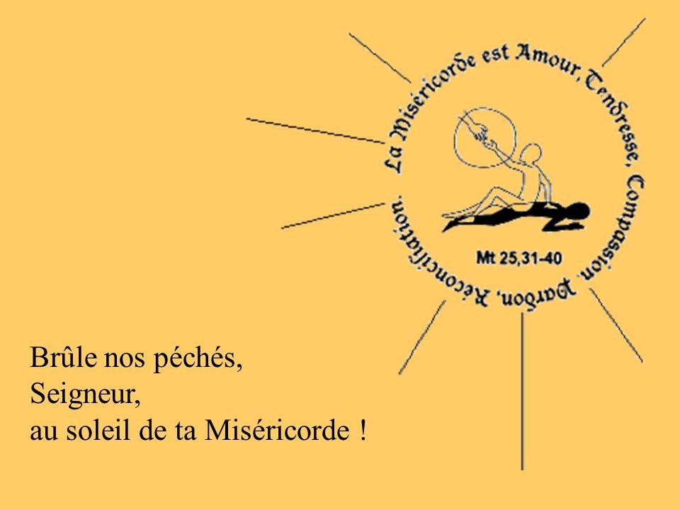 Brûle nos péchés, Seigneur, au soleil de ta Miséricorde !