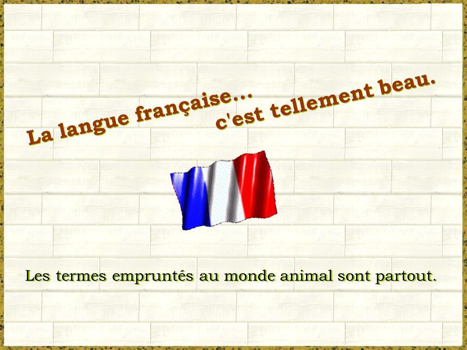 La langue française...c est tellement beau. La langue française...