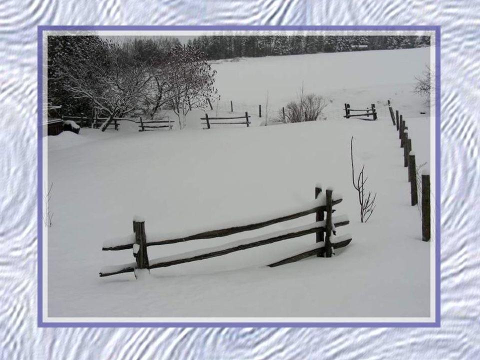 Ah. Comme la neige a neigé. Ma vitre est un jardin de givre, Ah.
